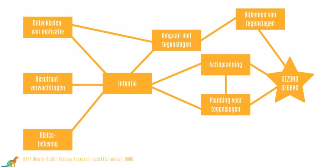 HAPA-model voor gezonde gedragsverandering