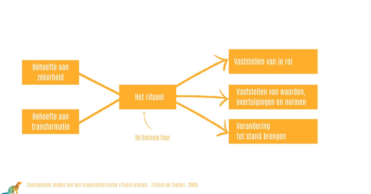 Conceptueel model van het organisatorische rituele proces